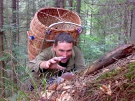 Полювання на гриби у Ворохті