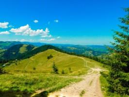 10 причин поїхати в Карпати влітку 2020 року